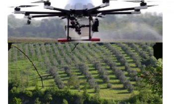Prova 2018 Utilizzo del drone  nella difesa fitosanitaria dell'olivo